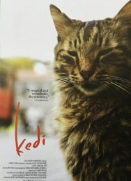 Kedi cats of Istanbul movie flyer