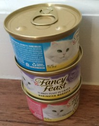 less healthy wet cat food
