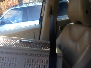 cat carrier inside car  with seatbelt