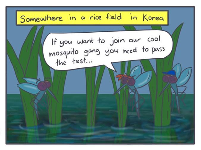 Nicholalala Mosquito