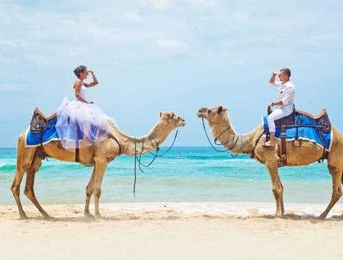 lune de miel de star - couple sur des chameaux plage et eau turquoise