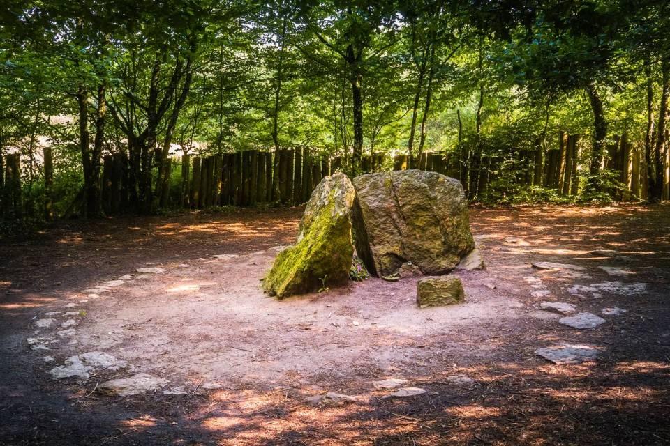 Découvrir la forêt de Brocéliande