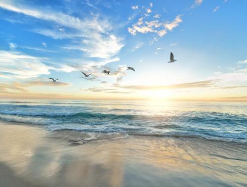 ou partir en octobre - plage sun
