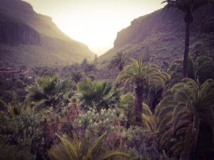 Vacation Canary Islands