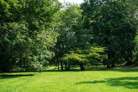 When the gardens became too expensive and costly to maintain, they were replaced with lawn grass.