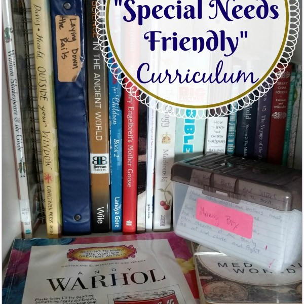 Our Favorite Special Needs Friendly Curriculum