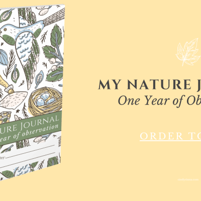 Announcing…My Nature Journal: One Year of Observation