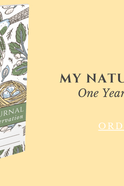 My Nature Journal Available now via cindyrinna.com