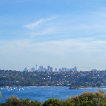 Manly Scenic Walk downtown view