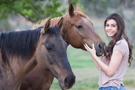 What legal issues do you need to consider before buying a horse?