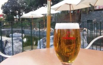 bier-terrasse-doramas-park.jpg