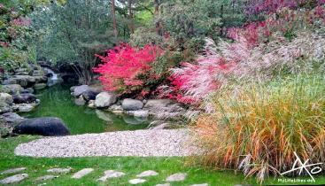 Bild aus den Gärten der Welt