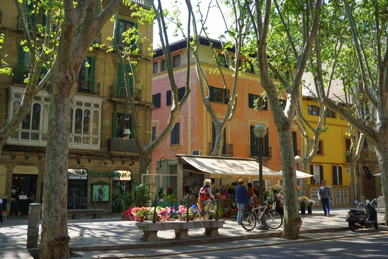 What to see in Palma? Take a stroll up La Rambla for all the flower markets