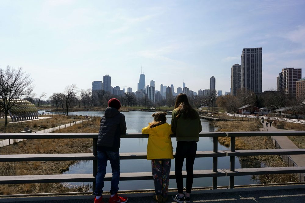 cityscape view of Chicago from Lincoln Park Zoo