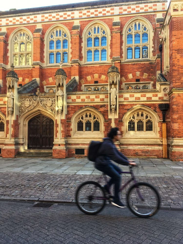 fun things to do in cambridge for a day