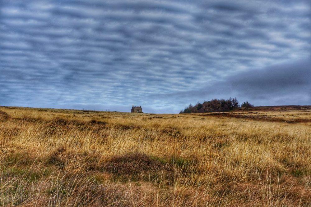 Best walks in Peak District - Longshaw estate Derbyshire, England