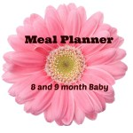 Meal Planner for 8 and 9 month Babies