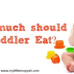 how much should a toddler eat