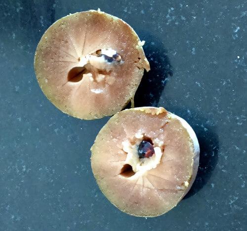 how to make chikoo sapota sapodilla puree for babies