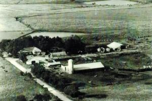 Delia Farm 1980s