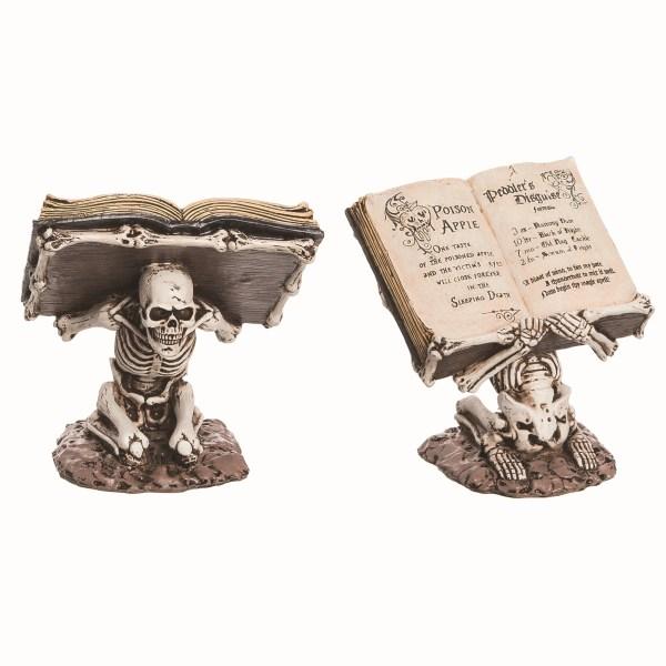 livre des sorts squelette