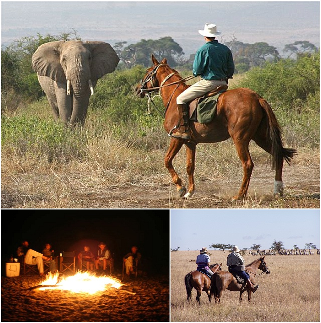 Honeymoon Inspiration: Offbeat Safaris