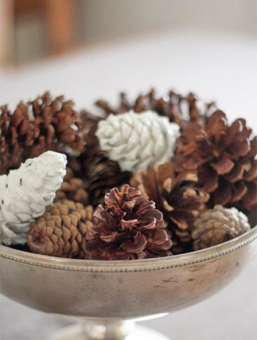 """Pine Cones in Bowl"""