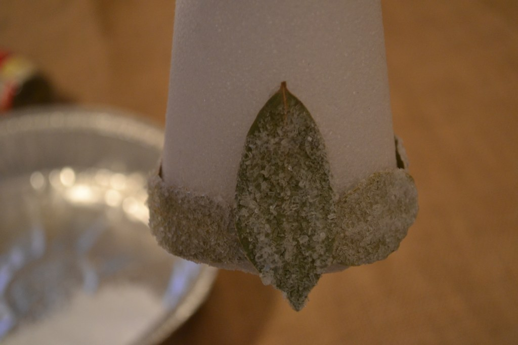 """Glue Bay Leaf in Vertical Direction"""