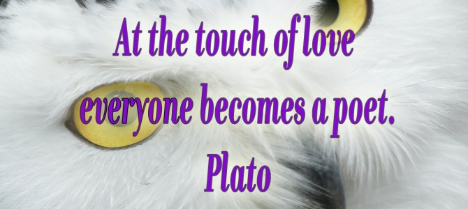 Everyone becomes a poet when touched by love
