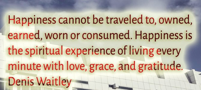 Happiness is the spiritual experience of living every minute with love