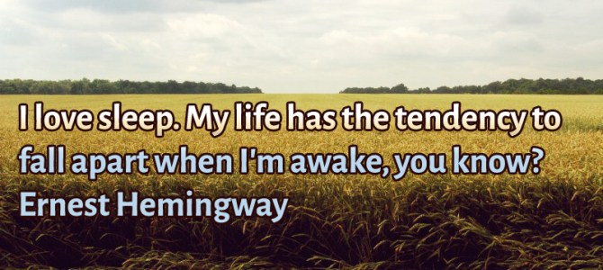 My life tend to fall apart when I'm awake, that's why I love sleep