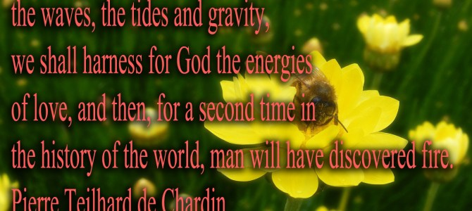 We shall harness for God the energies of love