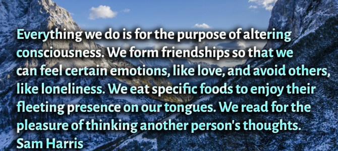 We form friendships so that we can feel certain emotions, like love