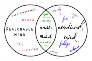 Three minds: reasonable, emotional and wise.