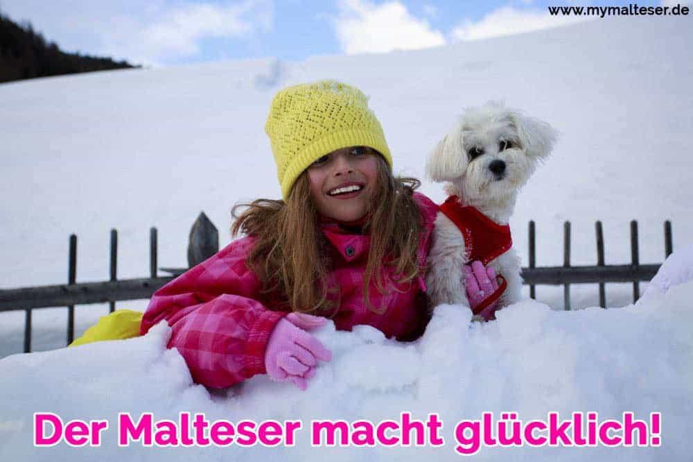 Eine Frau spielt mit ihrem Malteser im Schnee