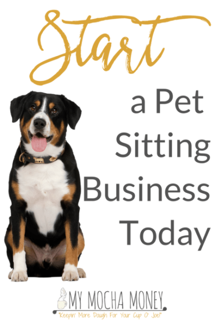 Start a Pet Sitting Business Today