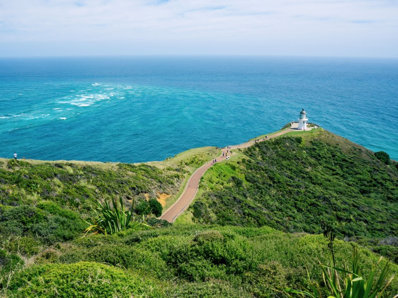 Five Big Highlights You Must Not Miss In New Zealand's Northland