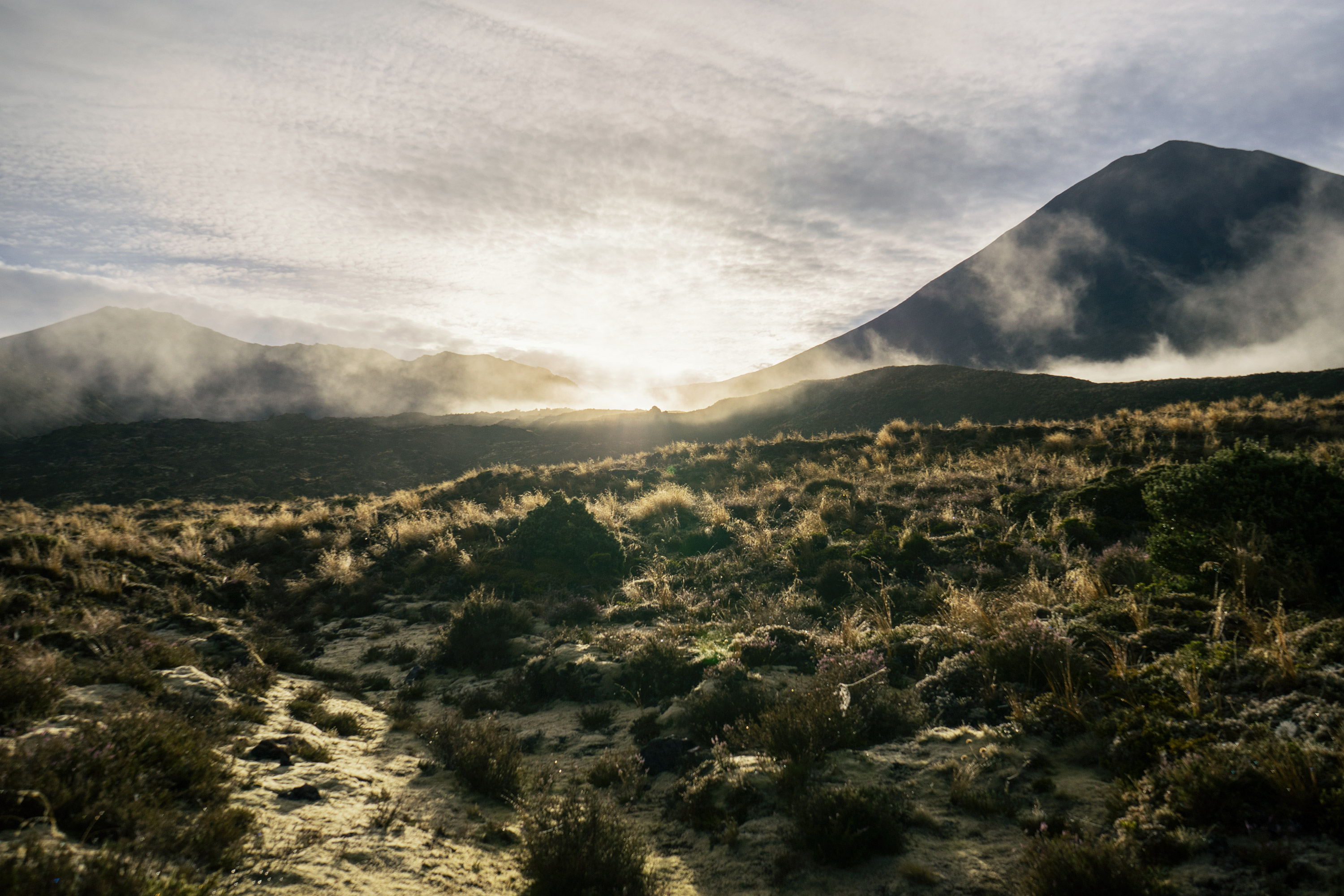 Tongariro Alpine Crossing Foggy Sunrise