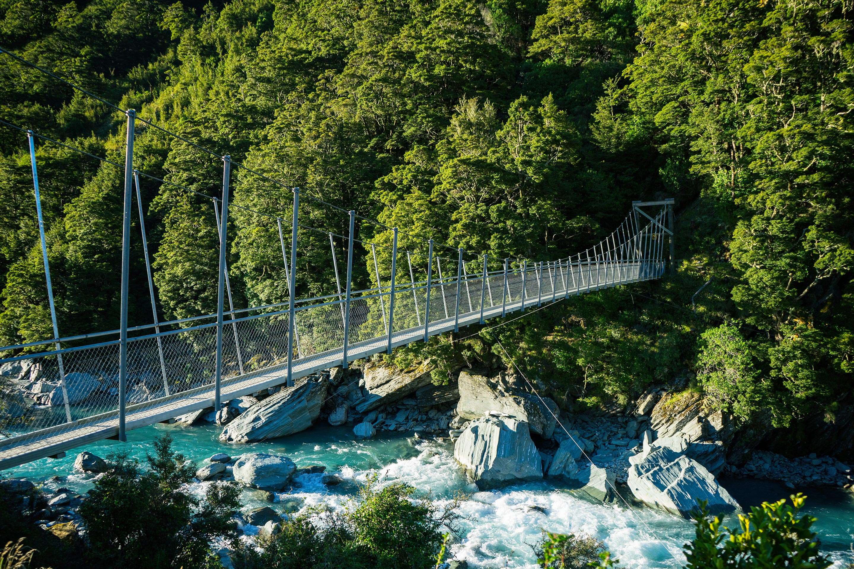 Mt Aspiring National Park Rob Roy Glacier Walk Suspended Bridge