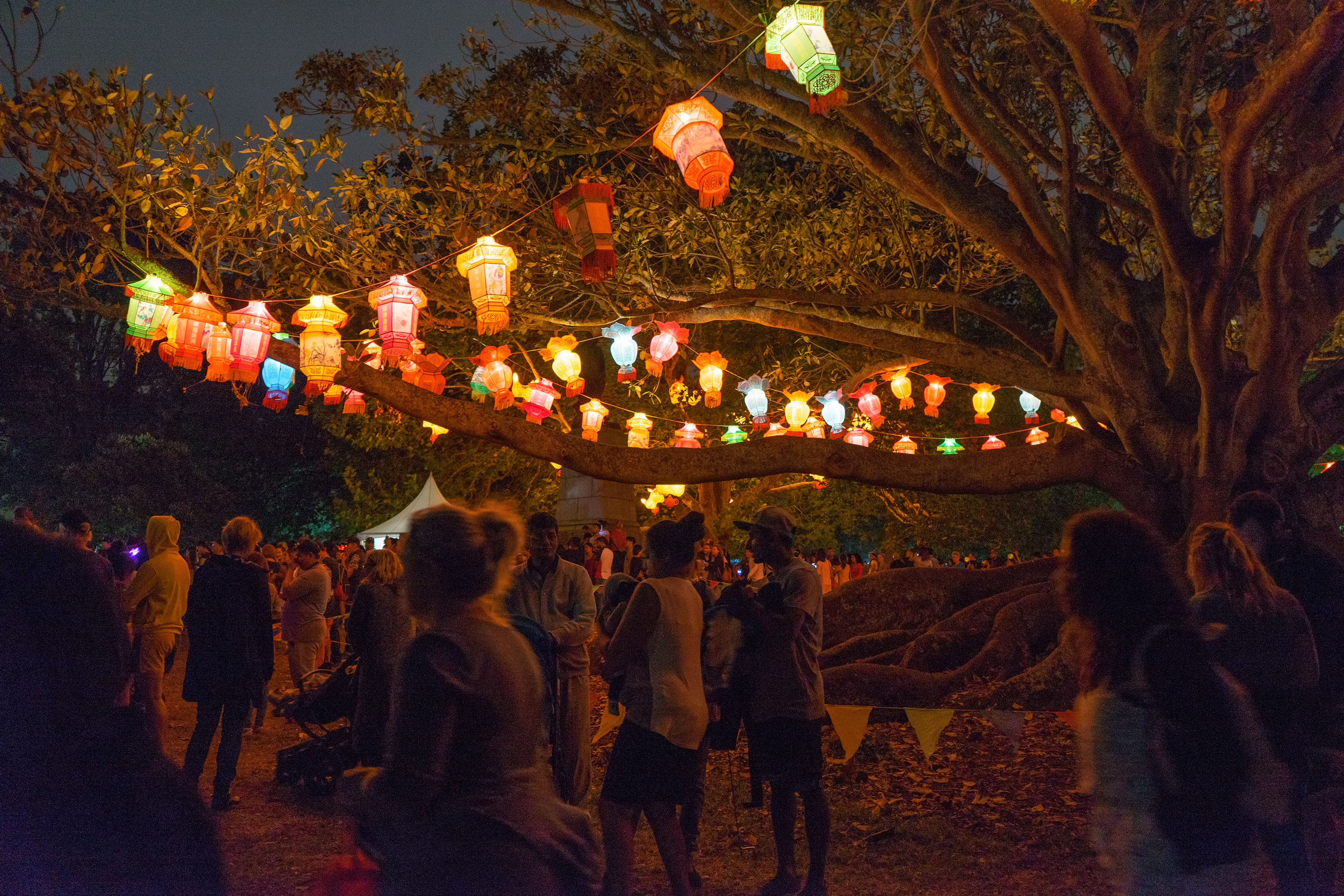 Auckland Domain Lantern Festival At Night