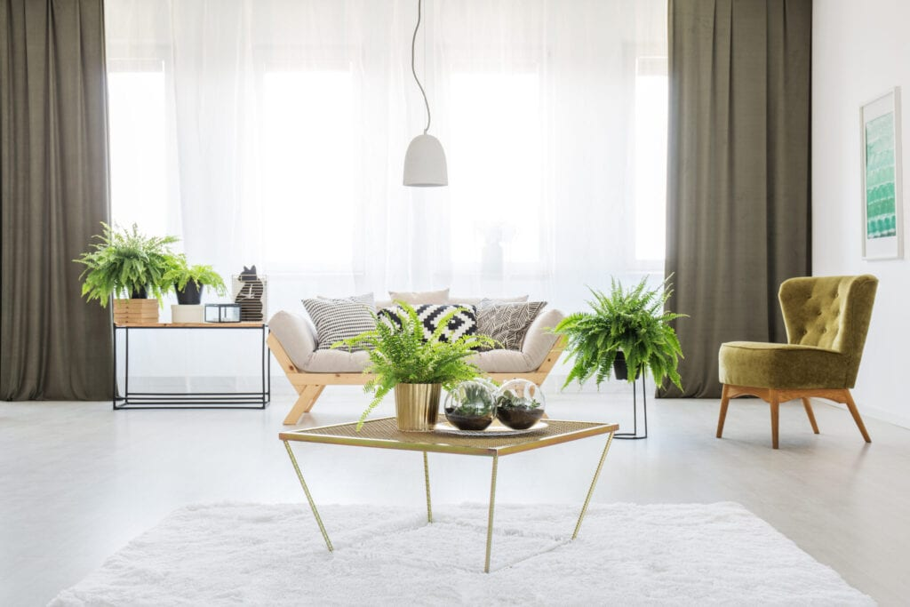 Decorating With Olive Green 10 Ideas For Fall And Beyond