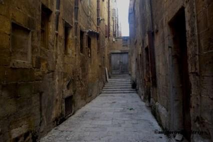 Rue Arya