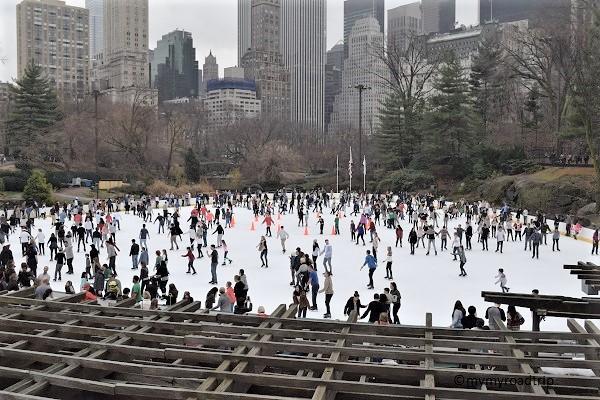 patinoire à new york central park