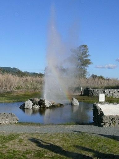 geyser-napavalley3