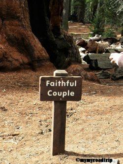 yosemite-faithfulcouple