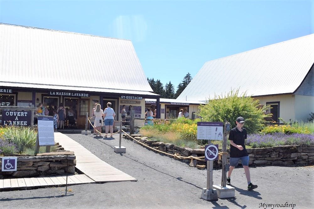 maison de lavande canada montreal champ