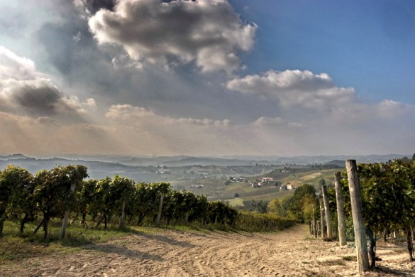 monferrato open space
