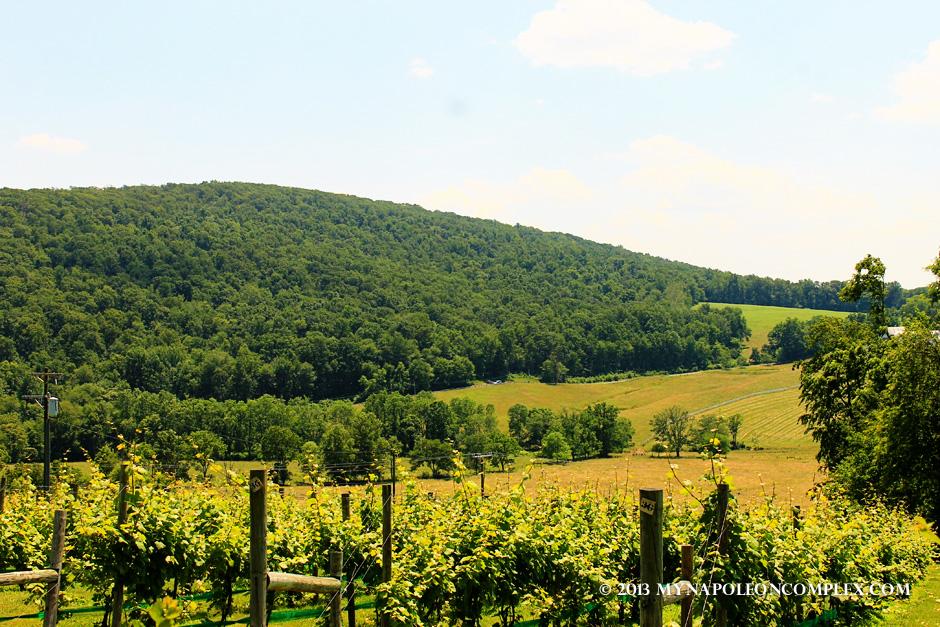 Virginia Wine Country-06