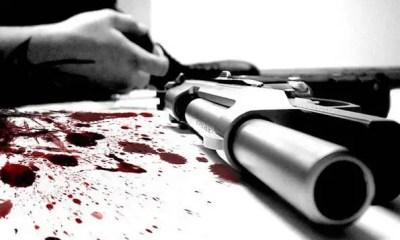 Gun-blood-murder