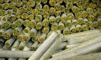 Nigerians smoke the most weed on earth as they spend over $15billion annually